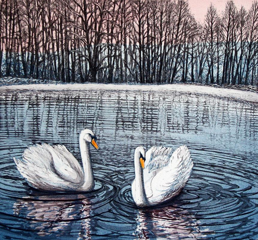 Winter Swans