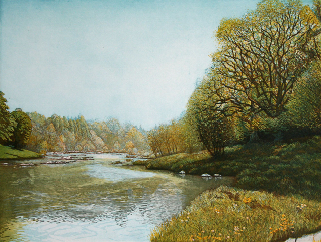 Spring on the River Wye II